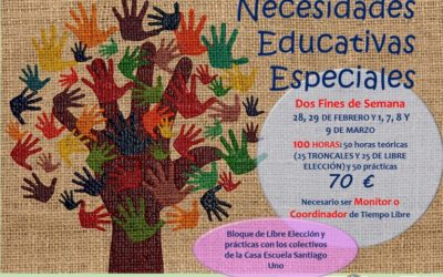 Curso Monitor Especialista en Necesidades Educativas especiales