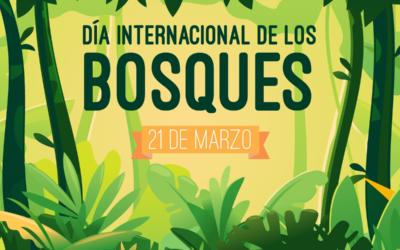 Día Internacional de los Bosques