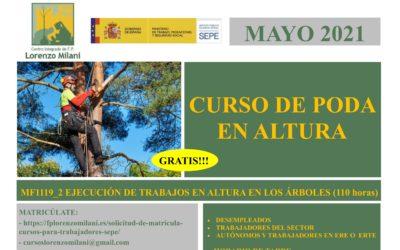 """Curso """"Ejecución de Trabajos en altura en los árboles"""""""